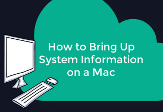 Retrieving System Information on a Mac